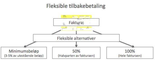 Fleksibel tilbakebetaling screen